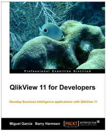 QV11 For Developers