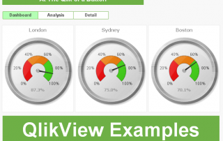 QlikView Examples