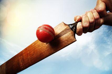 Cricket Bat Smaller